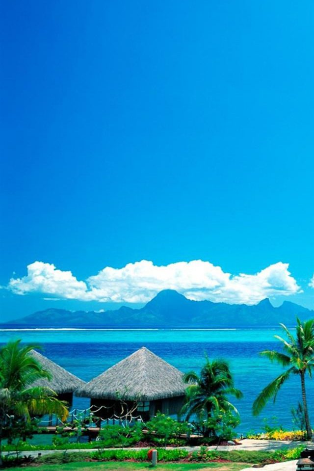 Beach Tropical Android wallpaper