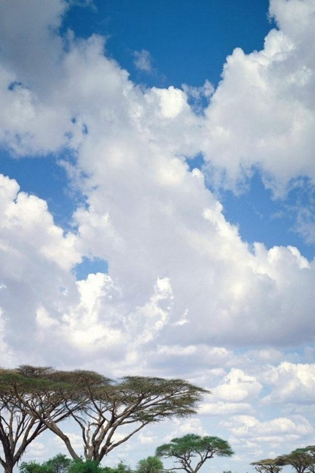 Safari Clouds Android wallpaper