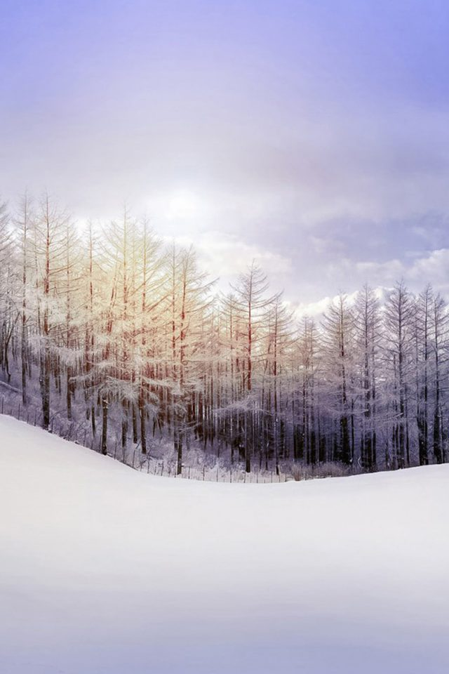 Winter Landscape Android wallpaper