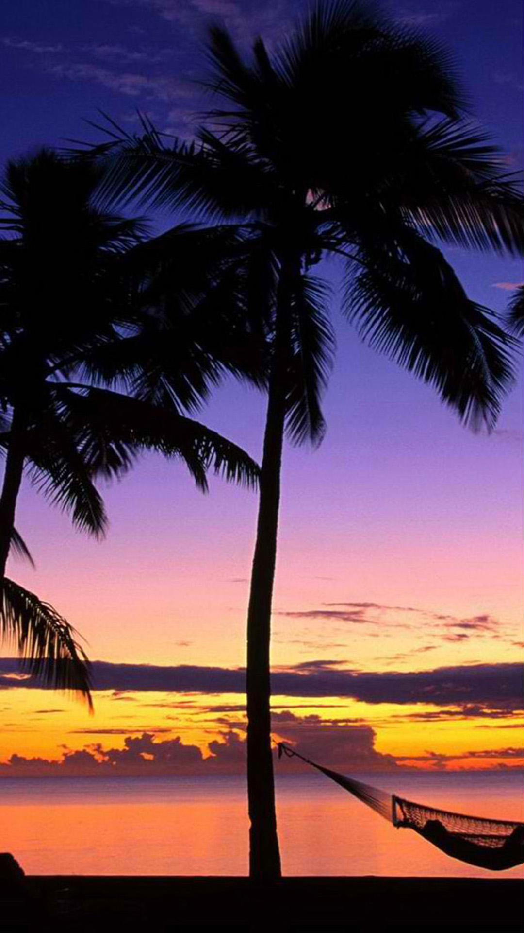 Beach Palmtrees Android wallpaper