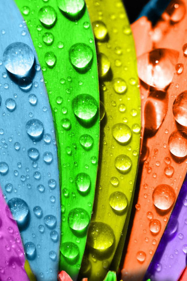Colorful macro water drops Android wallpaper