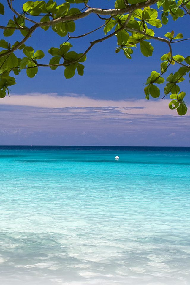 Karon Beach Blue Android wallpaper