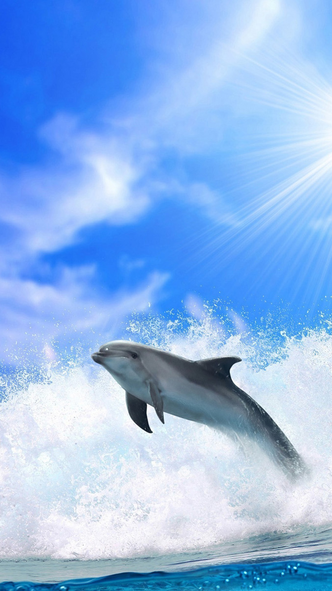 Ocean Dolphins Android wallpaper
