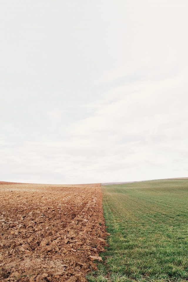 Barren Land Green Field Nature Android wallpaper