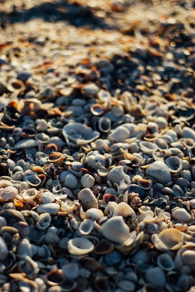 Beach Sand Rock Nature Pattern Android wallpaper