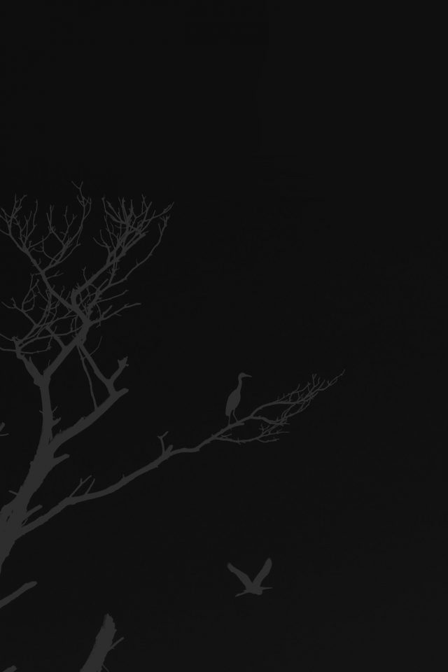 Bird Sunset Tree Dark Nature Minimal Android wallpaper
