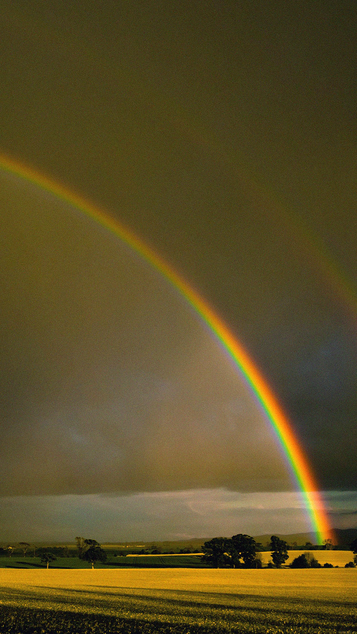 Double Rainbow Nature Android wallpaper
