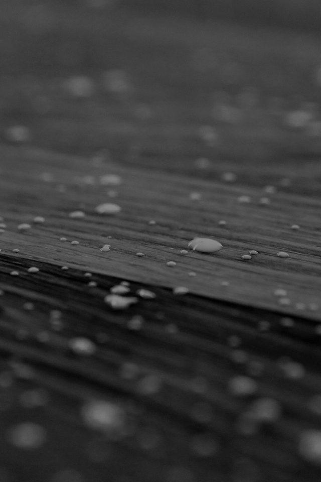 Drops Of Milk On Floor Pattern Nature Dark Bw Android wallpaper