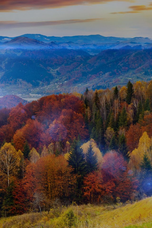 Fall Mountain Fun Red Orange Tree Flare Nature Android wallpaper
