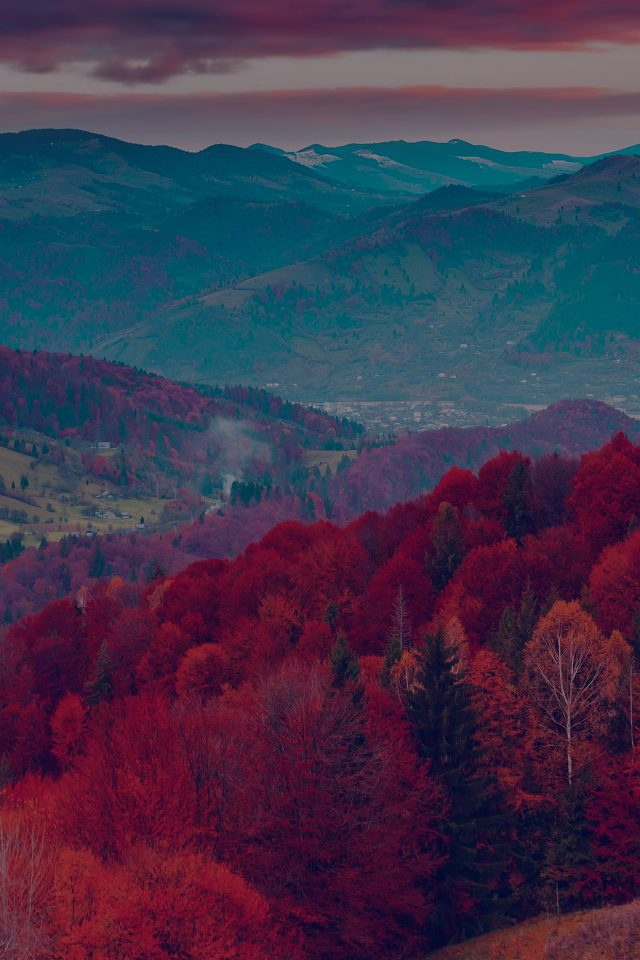 Fall Mountain Fun Red Tree Nature Dark Beautiful Android wallpaper