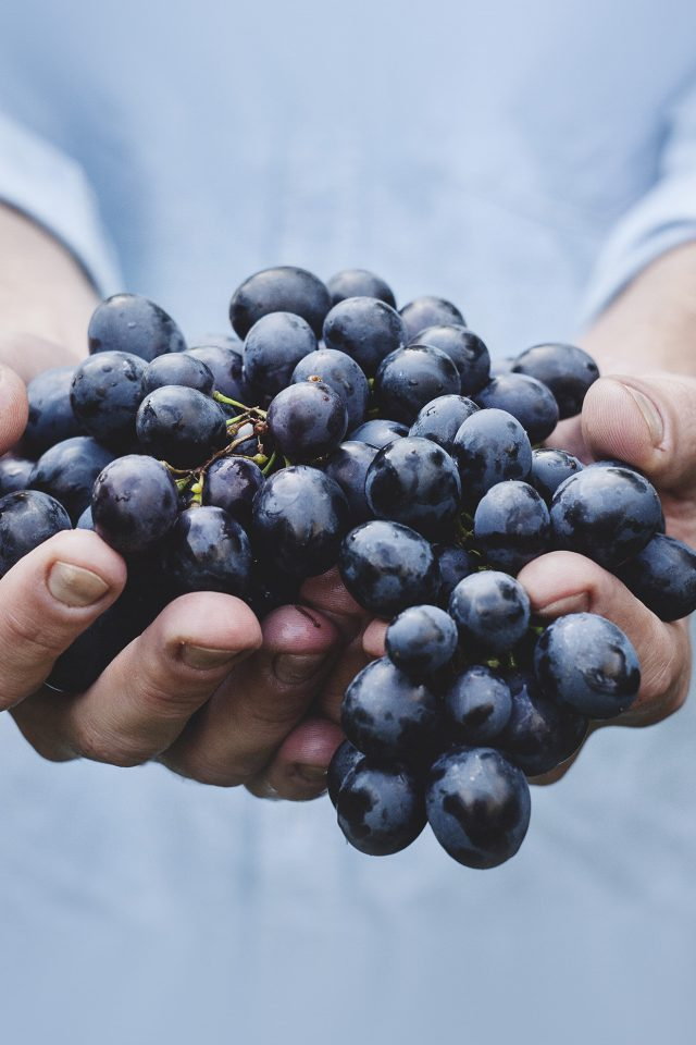 Farmer Food Grapes Fruit Nature Bokeh Android wallpaper