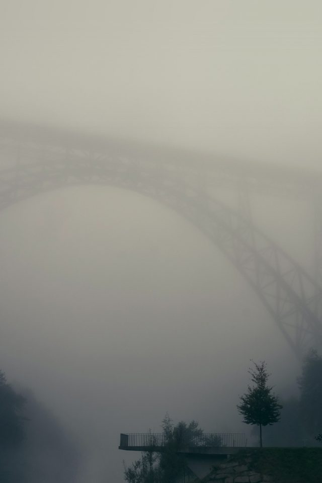 Foggy Bridge Herr Olsenmungsten Tree Nature Android wallpaper