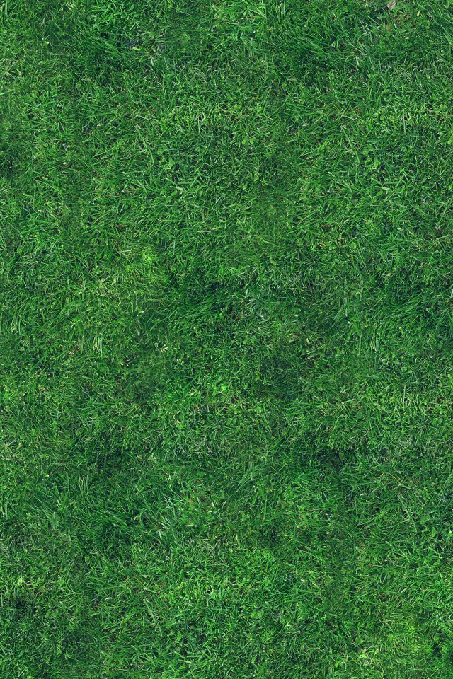 Grass Texture Nature Pattern Android wallpaper