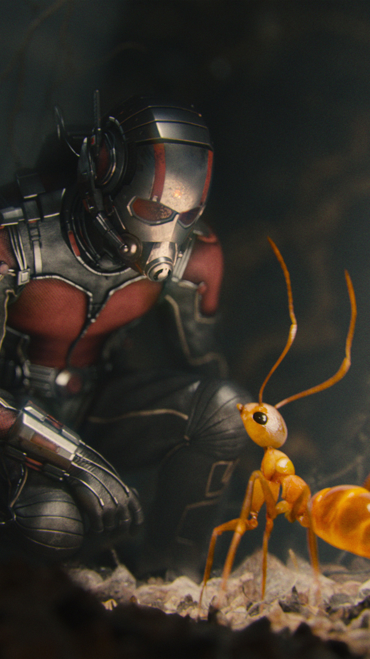 Marvel Antman Metts Ant Film Art Illustration Android wallpaper