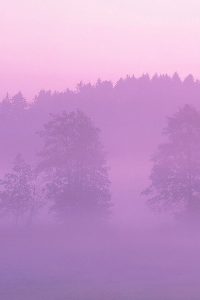 Misty Pink Forest Mountain Nature Android wallpaper