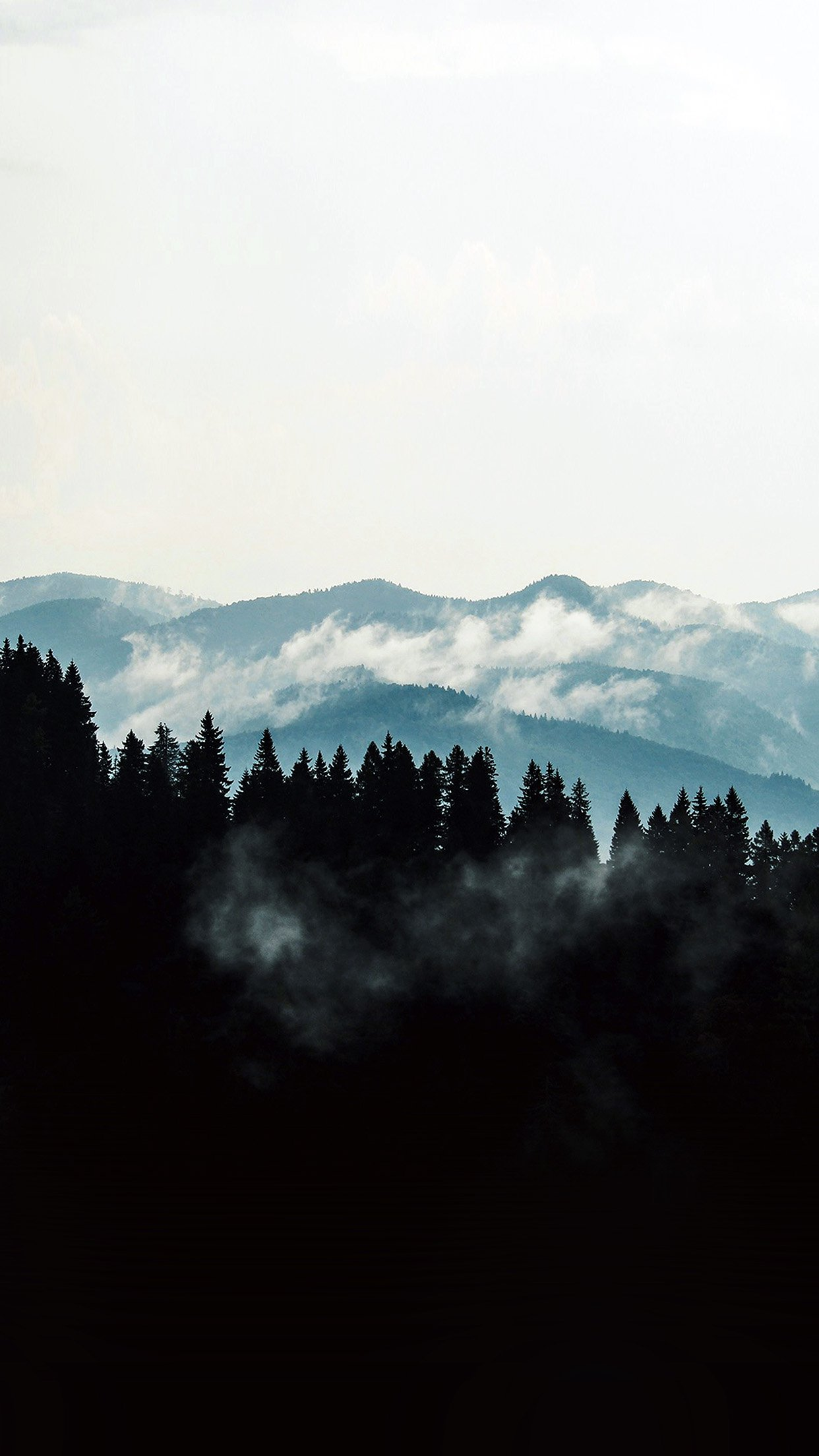 Mountain Fog Nature View Wood Forest Dark Android wallpaper