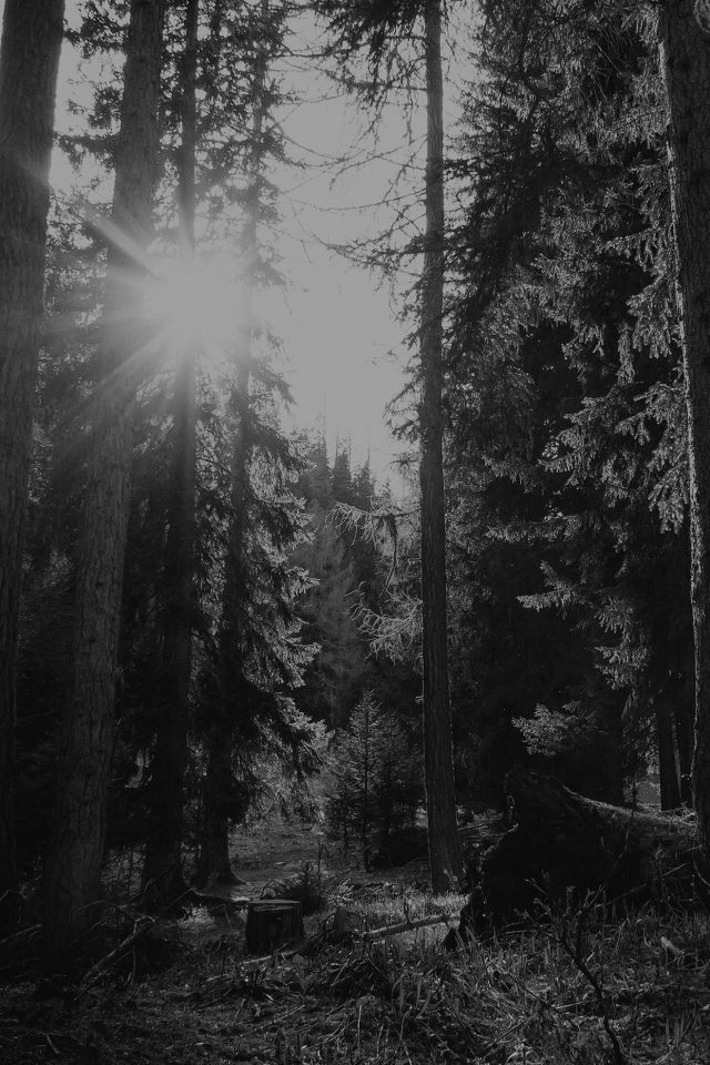 Mountain Sunlight Bw Marco Jorger Nature Android wallpaper