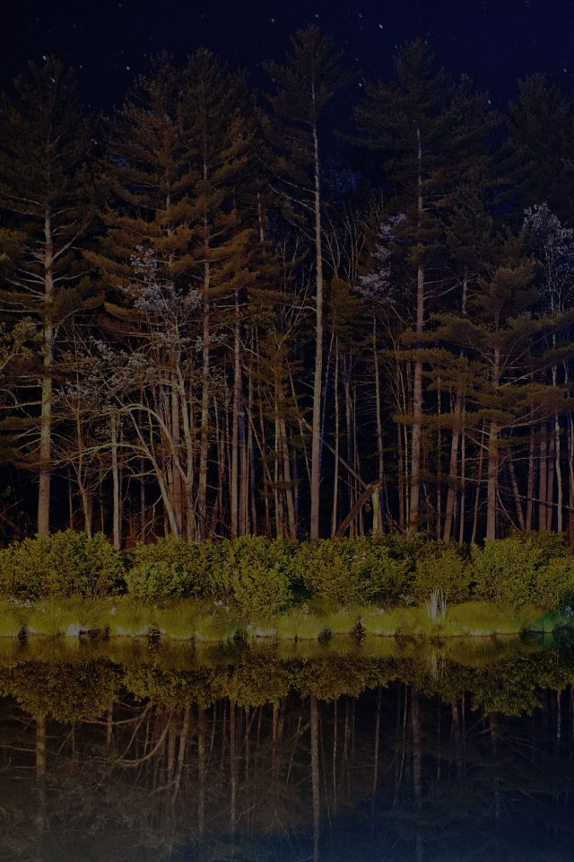 Night Dark Wood With Lake Nature Android wallpaper