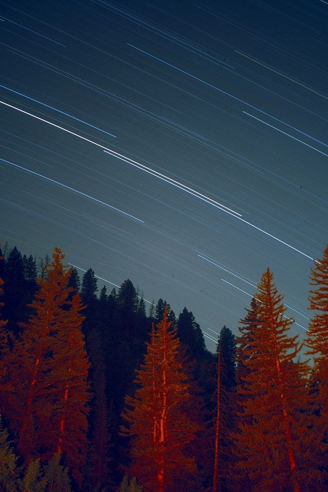 Night Wood Mountain Star Sky Nature Android wallpaper