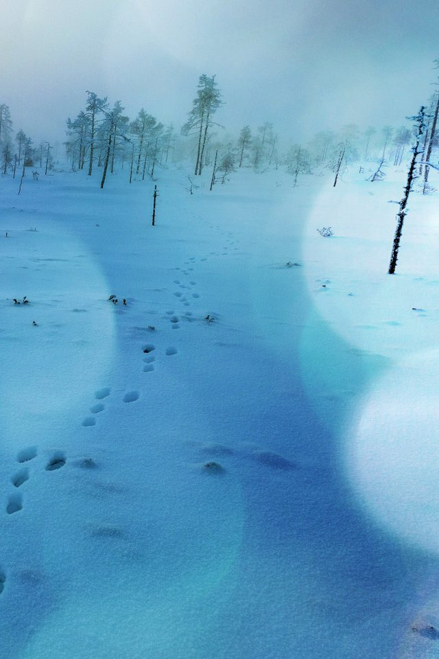 Snow Walk Winter Blue Bokeh Footprints Nature Mountain Android wallpaper