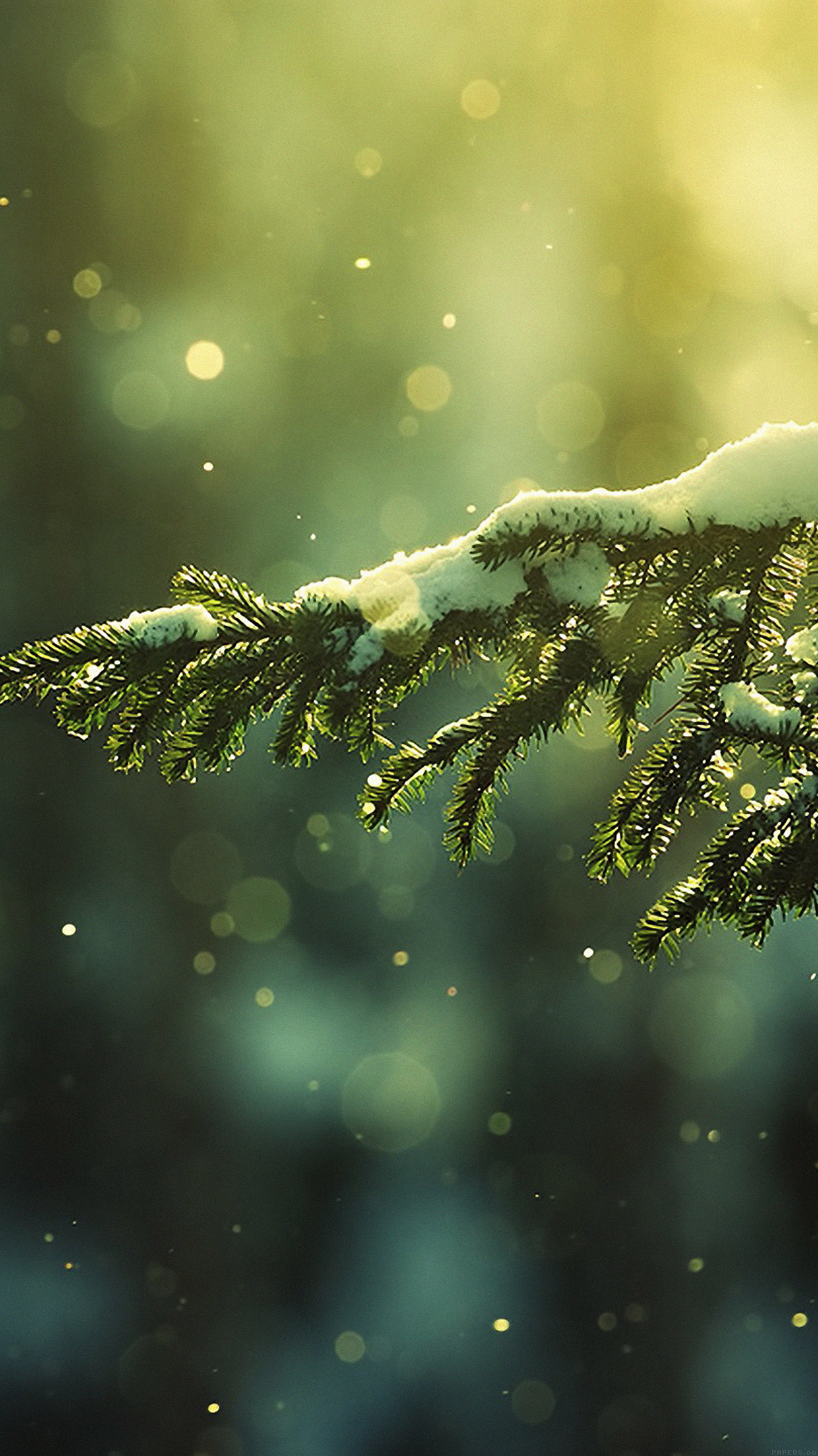 Snowing Tree Winter Nature Mountain Android wallpaper