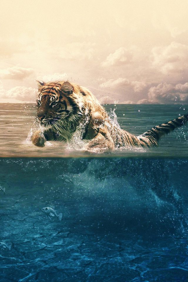 Tiger Running Blue Sea Nature Android wallpaper