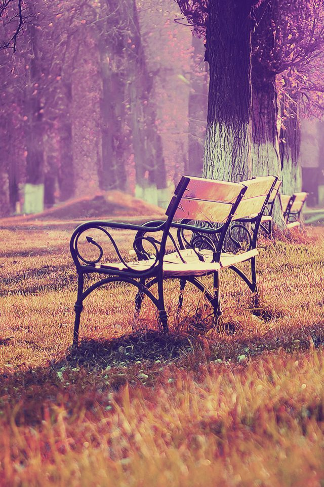 Wallpaper Fall Blue Park Chair Lonely Nature Android wallpaper