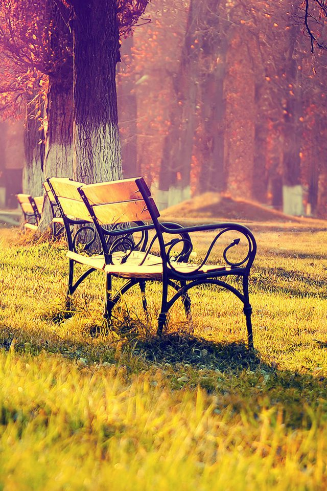 Wallpaper Fall Park Chair Lonely Nature Android wallpaper