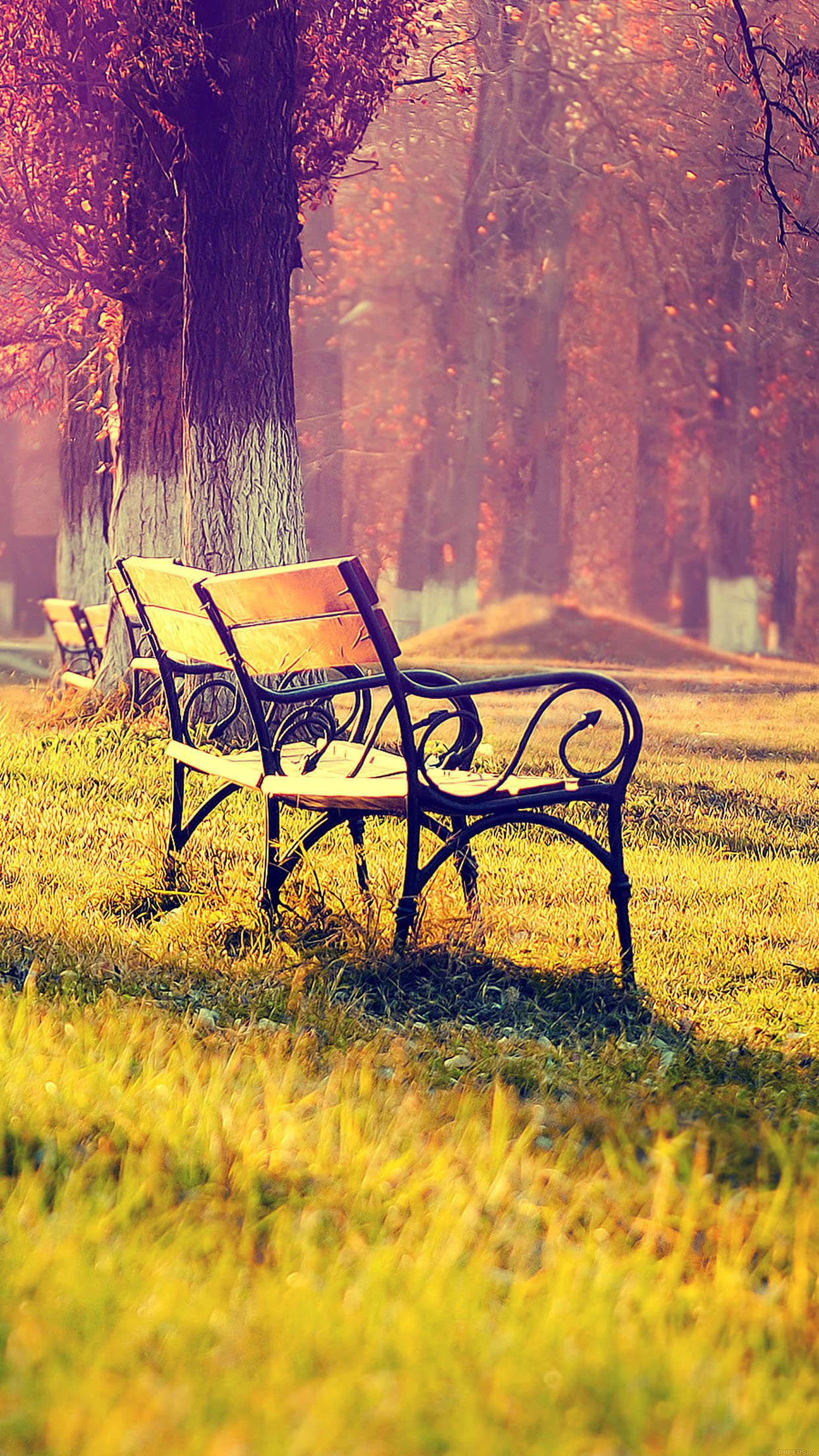wallpaper fall park chair lonely nature android wallpaper android hd wallpapers
