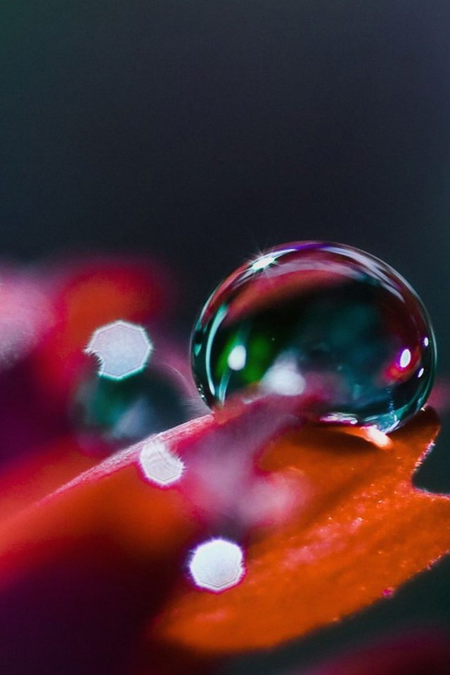 Wallpaper Raindrops Nature Bokeh Android wallpaper