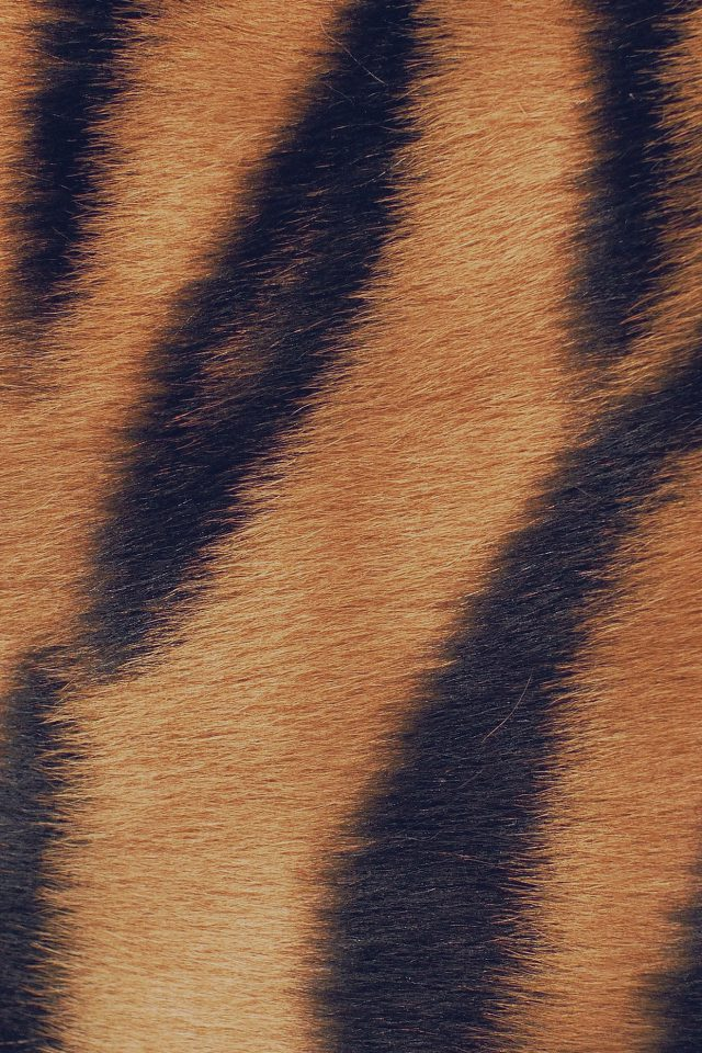 Wild Cat Texture Fur Nature Pattern Android wallpaper