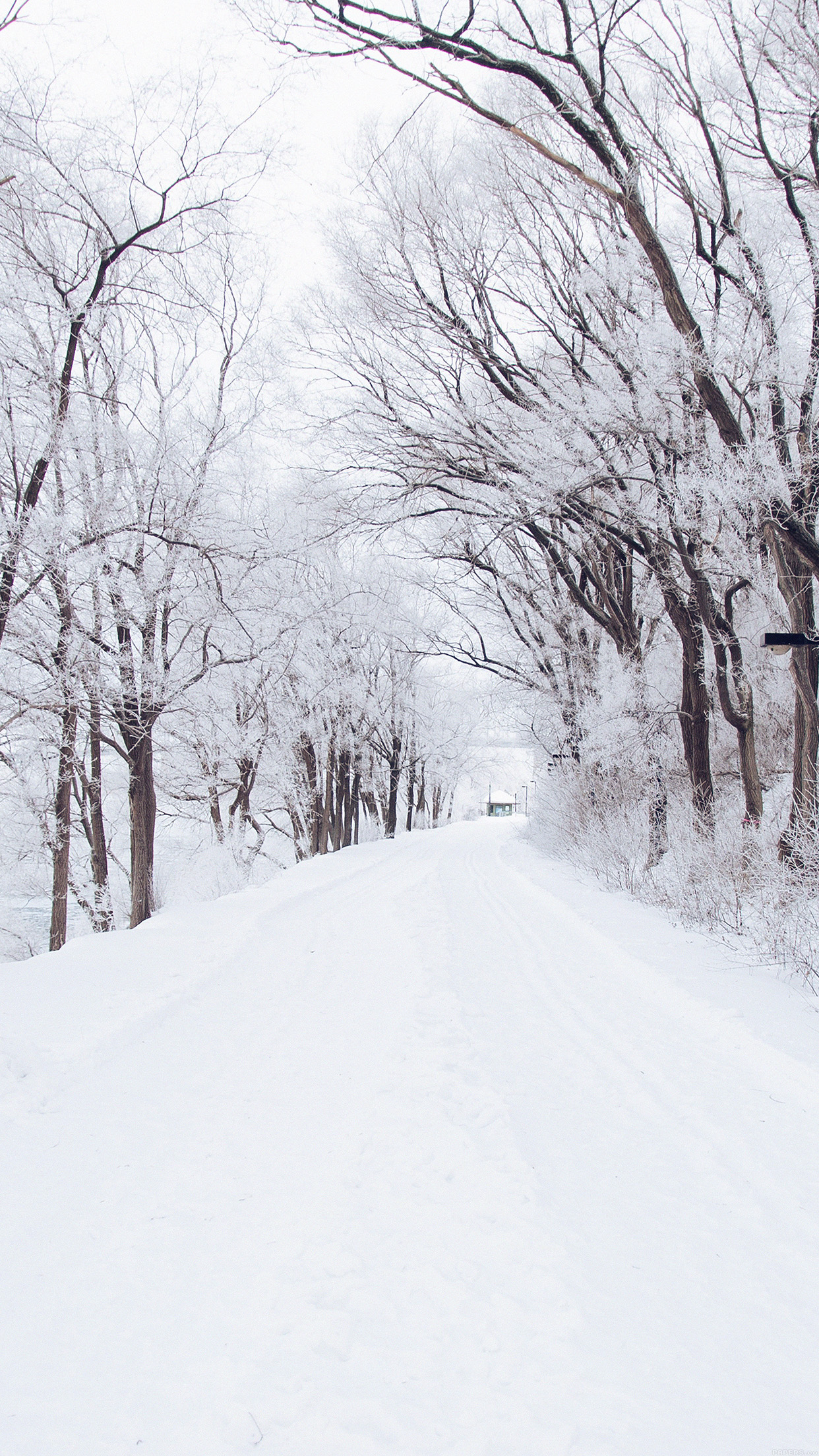 Winter Road Romantic Nature Mountain Snow White Android wallpaper