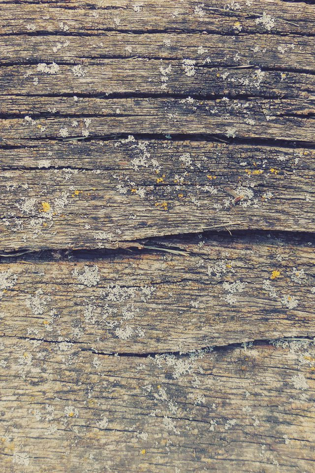 Wood Art Nature Pattern Android wallpaper