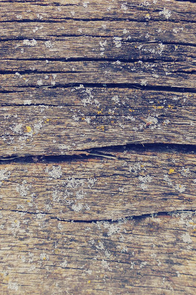 Wood Art Nature Pattern Blue Android wallpaper