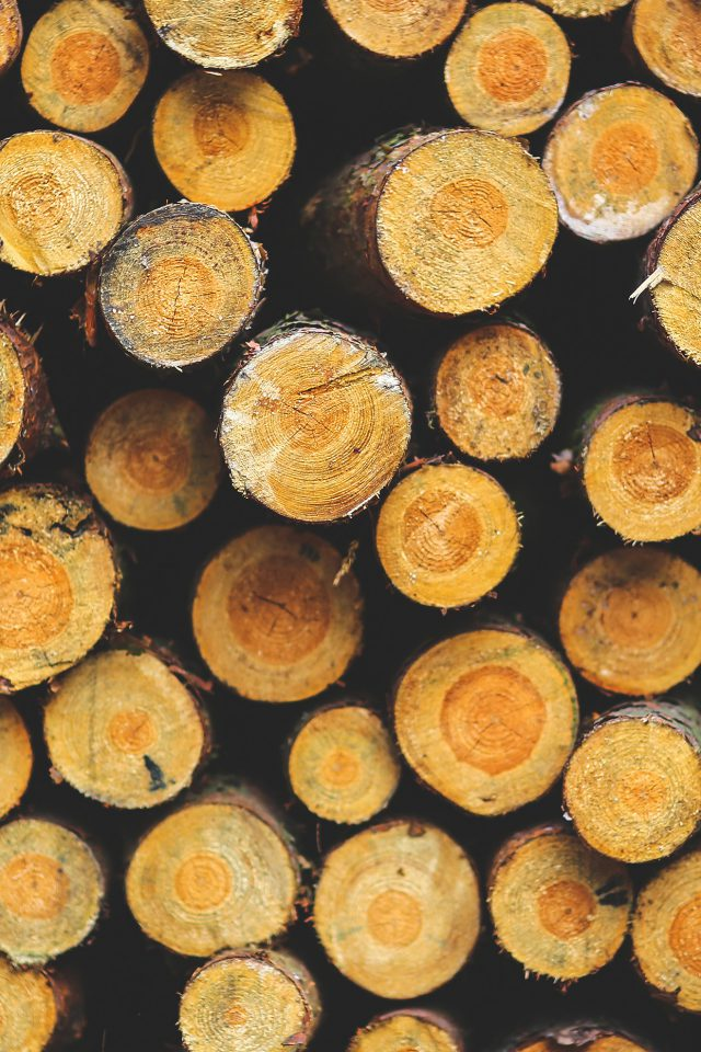 Wood Circle Piles Nature Pattern Android wallpaper