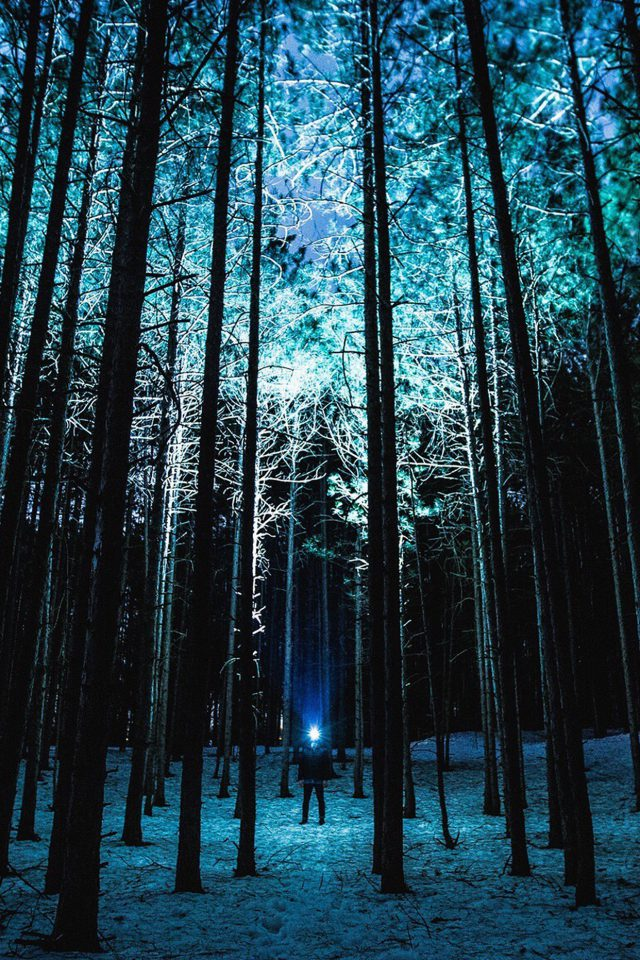 Wood Mountain Nature Blue Night Android wallpaper