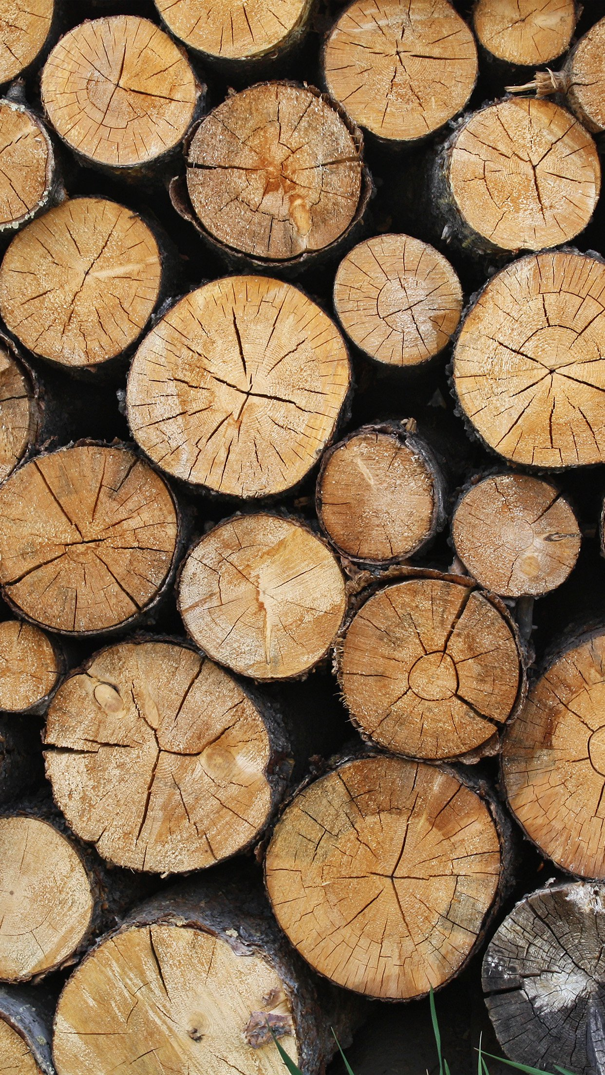 Wood Nature Cut Pattern Android Wallpaper Android Hd Wallpapers