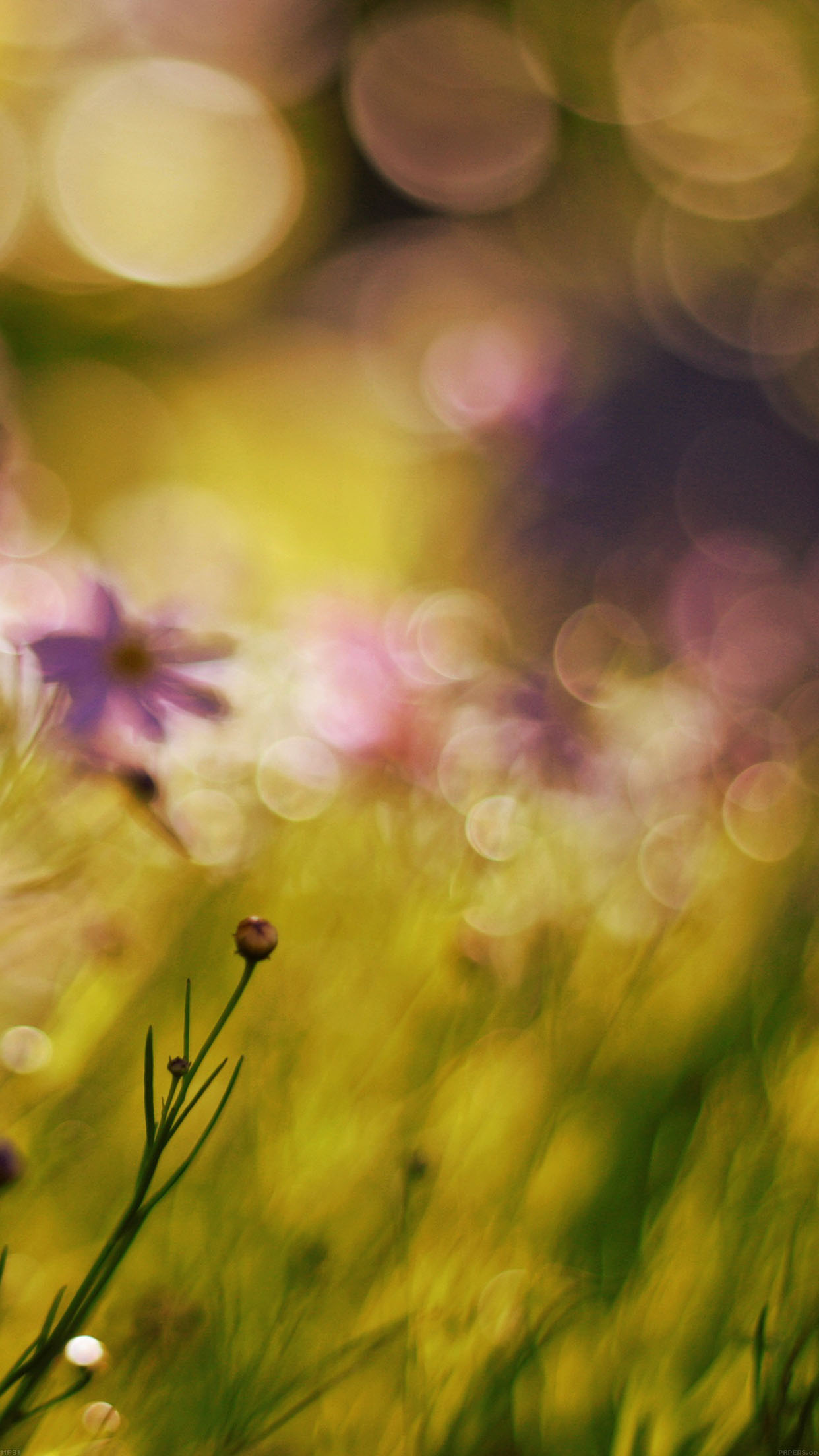 Flower Bokeh Spring Days Sweet Android wallpaper