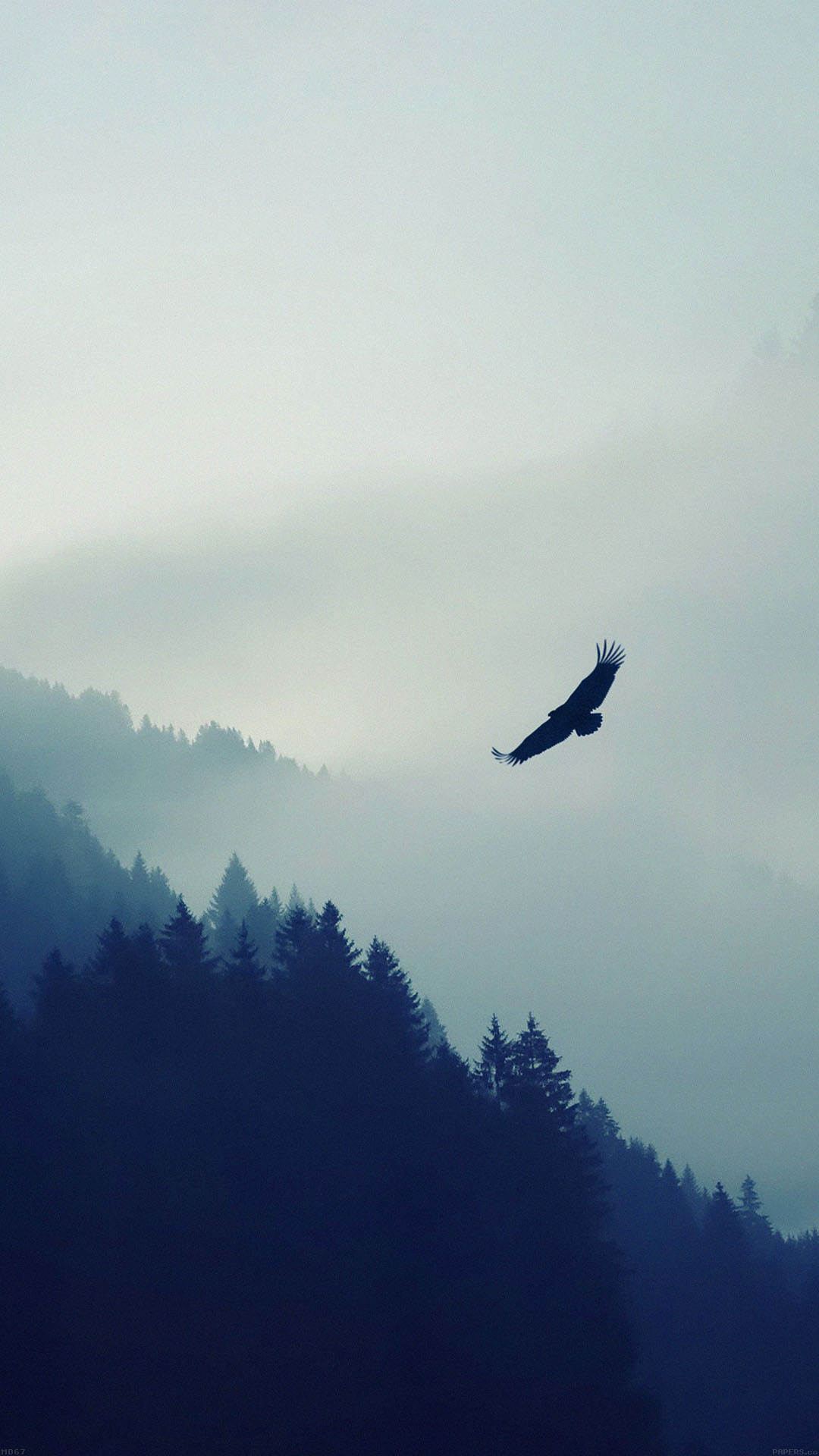 Eagle Mountain Fly Animal Android wallpaper