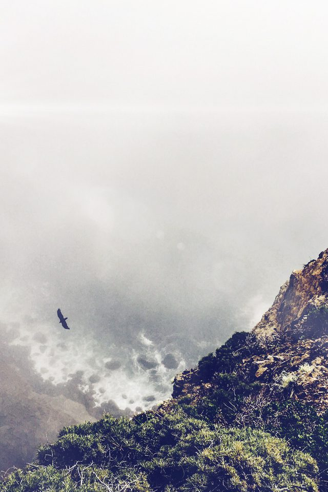 Mountain Bird Cliff Animal Fog Cloud Flare Android wallpaper