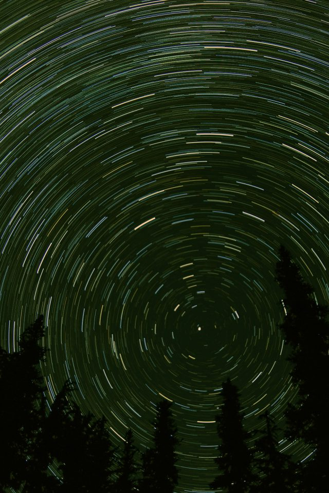 Star Trail Green Tree Space Night Nature Android wallpaper